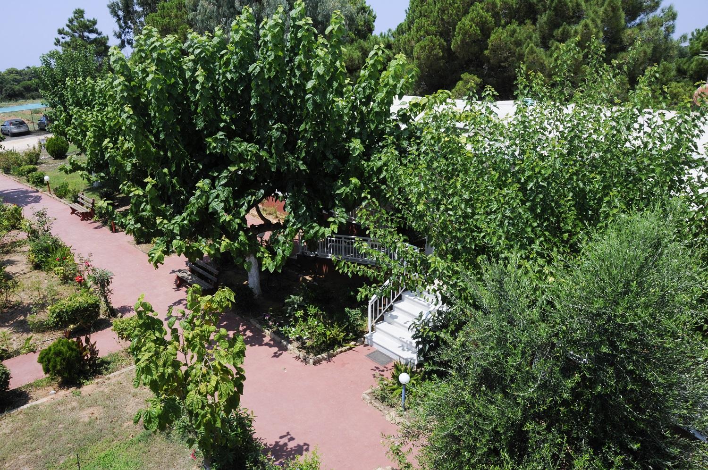 inside_garden_6